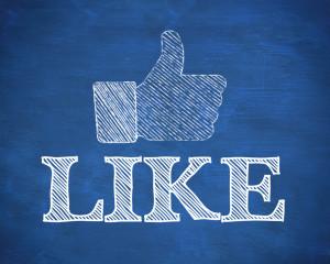 Facebook like social media